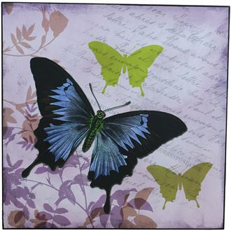 Picture 38x38 - Butterfly, 355117